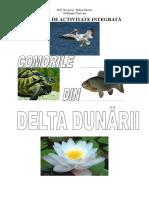 proiect-comorile-din-delta-dunc483rii-ecologie-eu-2003