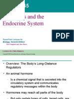 45 Endocrine System