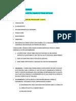 Formas de conclusion del proceso en la NLPT