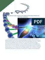 Filamentul ADN codificat in lumina si comunicarea cuantica biomoleculara