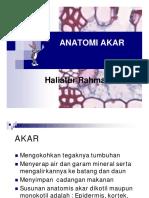 47934_KULIAH 7 ANATOMI AKAR.pdf
