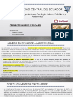 Proyecto cascabel