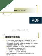 Fraturas Do Tornozelo