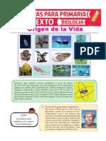 Origen-de-la-Vida-para-Sexto-de-Primaria.pdf