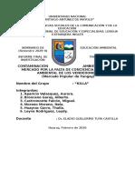 TRABAJO_MONOGRÁFICO_GRUPO_KILLA_FINAL