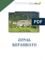 05 REPORTE ZONAL KEPASHIATO.pdf