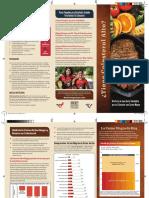 BLT-Patient-Handout_Spanish_to-print.pdf
