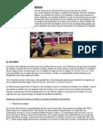 Caballos Definitivo PDF