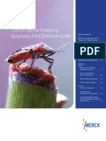 Tools & Tips for Analyzing Apoptosis a Kit Selection Guide_EUR
