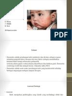 kmb 2 dermatitis