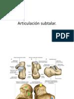 16.- articulacion subtalar