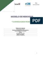 MODELOS DE NEGOCIOS VARIEDADES