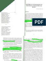LANE, S T M - Historico e Fundamentos da Psicologia Comunitaria no Brasil