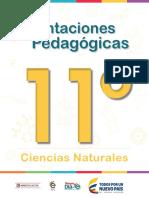 Orientaciones pedagógicas-Ciencias-Naturales-Grado-11.pdf