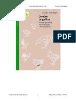 Cerebro_de_gallina-Giorgio_Vallortigara.pdf