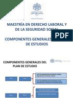 PLAN DE ESTUDIOS - MAESTRIA EN DERECHO LABORAL Y SEGURIDAD EN EL TRABAJO.pdf