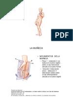 fisiologia  MANO copia.pdf