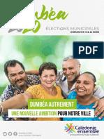 CE Programme Dumbéa - Municipales 2020