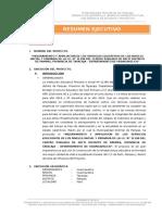 Resumen Ejecutivo CE Pacti