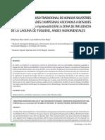 Dialnet-ConocimientoYUsoTradicionalDeHongosSilvestresDeLas-5261796-3.pdf