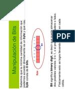 Manipulacion_de_Bits.pdf