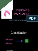 LESIONES PAPILARES