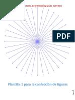 Neuroescritura de precisión.pdf