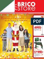 Brico Store, 2010.12.01-2011.01.02