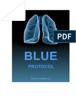 blue-protocol