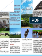 Homework - Hometwon Brochure- Retry