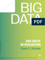 Big Data - Una Breve Introduccion- Dawn E. Holmes