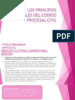 LOS PRINCIPIOS PROCESALES DEL CODIGO PROCESAL CIVIL