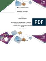 Formato Tarea 4 -  Producto indivual
