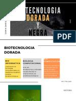 Biotecnologia Negra y Dorada