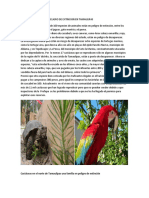 ANIMALES Y PLANTAS EN PELIGRO DE EXTINCION EN TAMAULIPAS