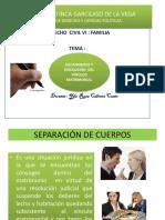 LECCIÓN   7  DERECHO DE FAMILIA - DCVI