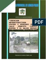 PROYECTO PISTAS Y VEREDAS TINGO MARIA-2015 -FINAL 01.doc