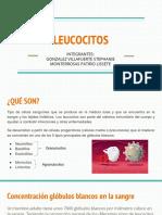 LEUCOCITOS (1)