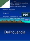 Delincuencia PDF