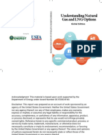Understanding Natural Gas and Lng Options