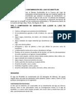 CAUSAS DE CONTAMINACIÓN DEL LAGO DE AMATITLÁN