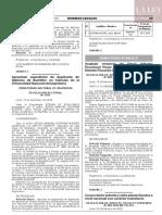Resolución N° 009-2020-MP-FN-JFS