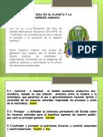 plan 1.pptx
