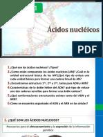 Acidos nucléicos