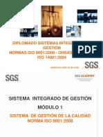 M1 D-SGI-HSEQ-ISO 9001 2008