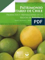 Inventario-Patrimonio-Tarapaca.pdf