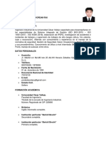 CURRICULUM VITAE DOCUMENTADO YORDAN BENDEZÚ B..pdf