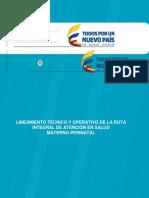Lineamiento-Ruta-materno-perinatal.docx