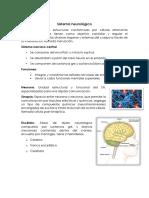 Sistema neurológico.docx