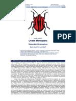 Himenoptera.pdf